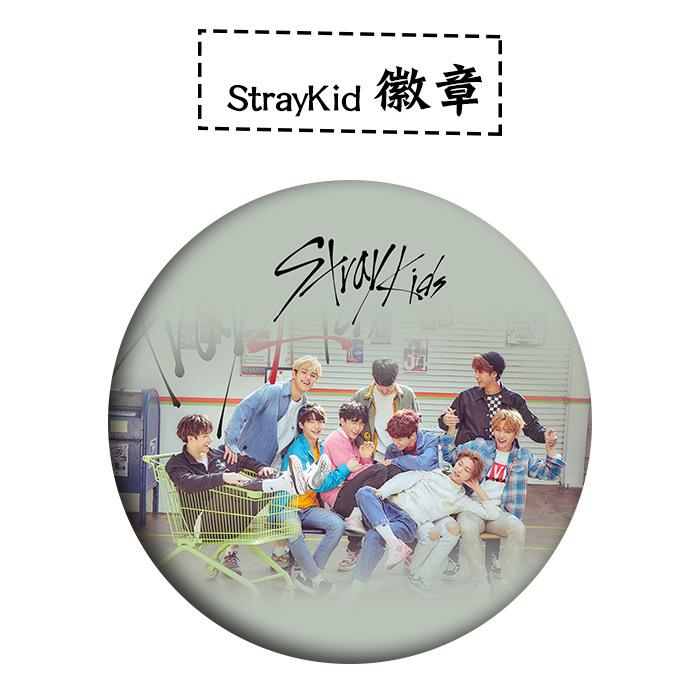เข็มกลัด - Stray Kids
