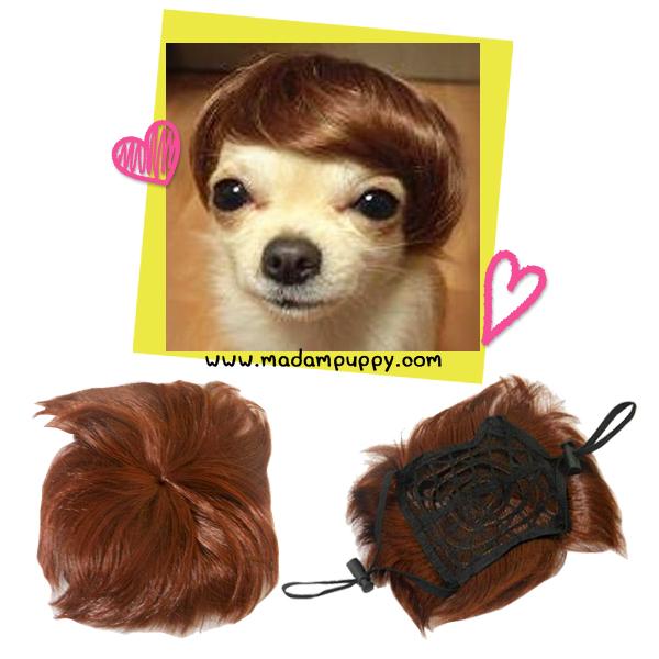 วิกผมน้องหมา น่ารัก สไตล์เกาหลี พร้อมส่ง