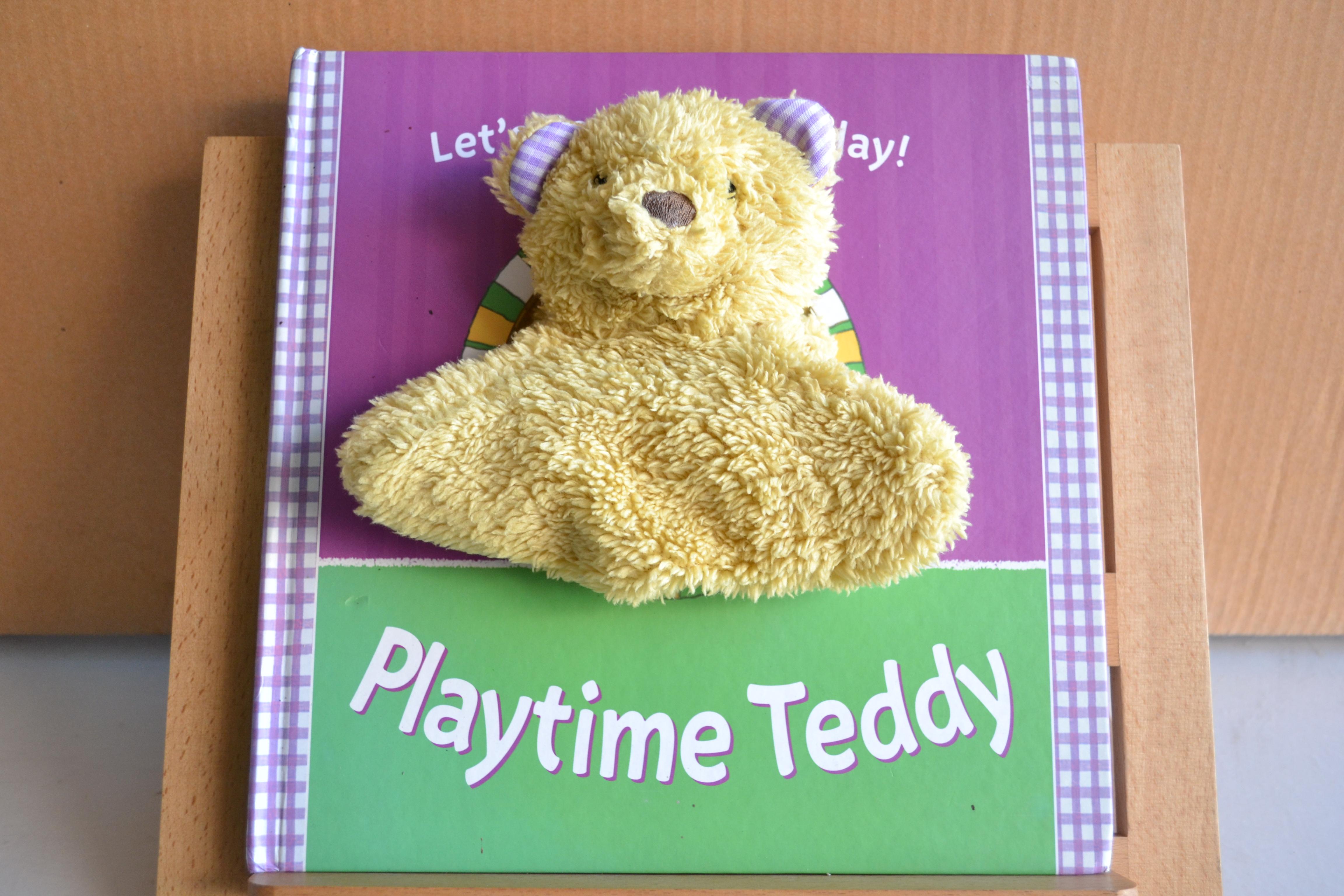 Playtime Teddy