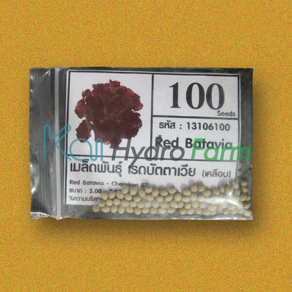 เมล็ดพันธุ์ Red Batavia (เคลือบ) 100 เมล็ด