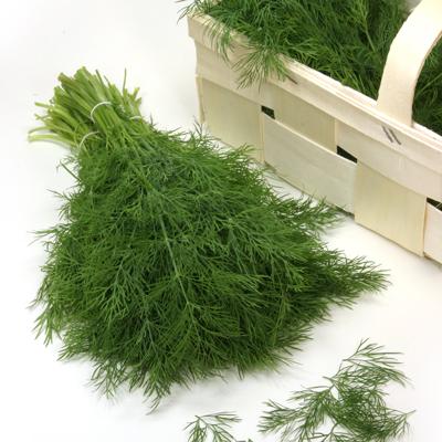 Dill-Hera Organic
