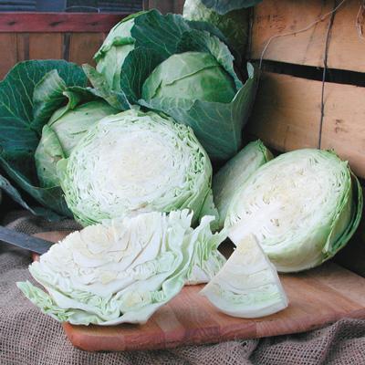 Derby Day Cabbage (กะหล่ำเดอร์บี้)