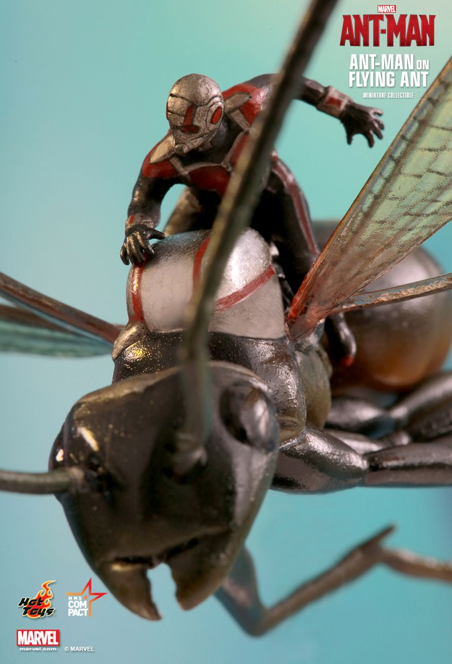 MMSC003 ANT-MAN - ANT-MAN ON FLYING ANT