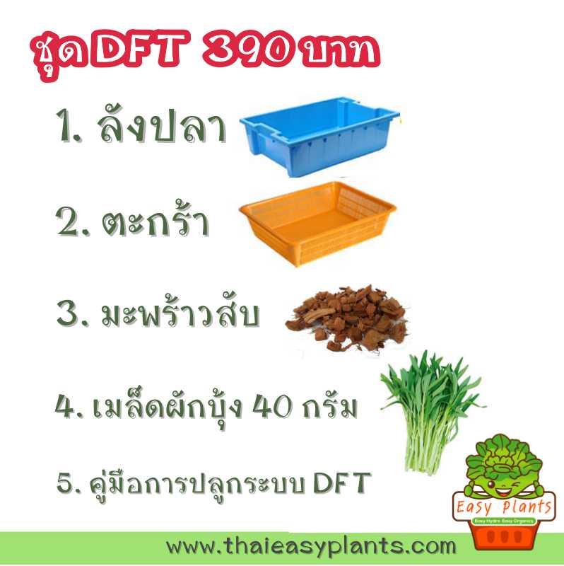 ชุดปลูกผักไฮโดรระบบ DFT ชุดเล็ก (ระบบน้ำนิ่ง) **ฟรีค่าส่ง ปณ.ธรรมดา**