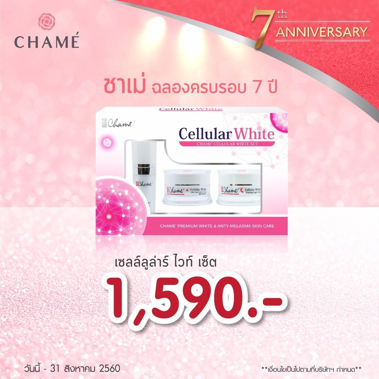 chame cellular white set