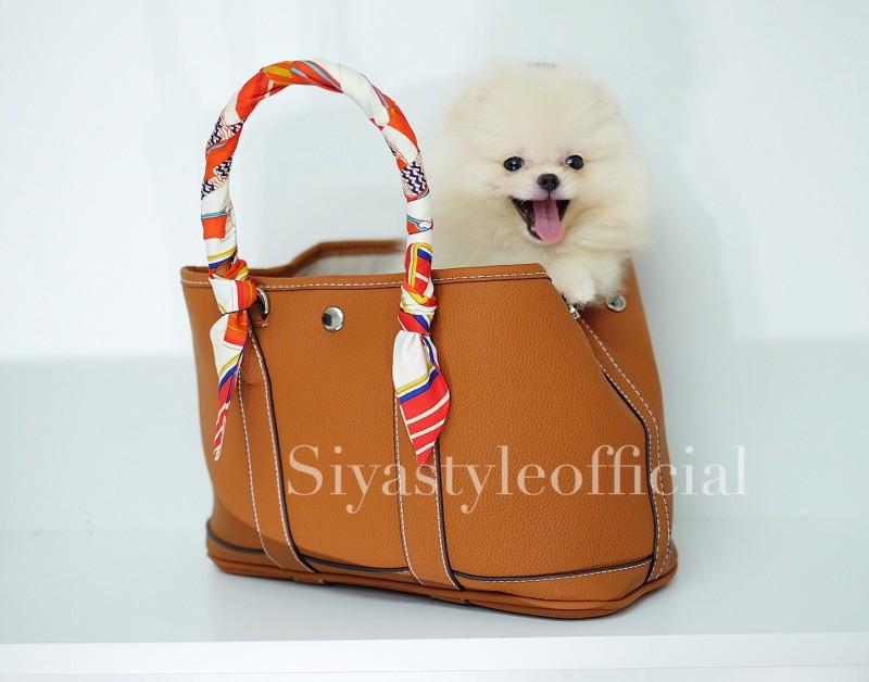 กระเป๋าสะพายแฟชั่น กระเป๋าสะพายข้างผู้หญิง Garden Bag [สีส้ม]