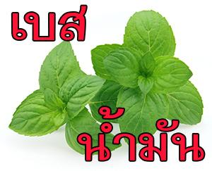 OBMT กลิ่นมิ้นท์ (น้ำมัน) Mint Flavor (Oil Based)