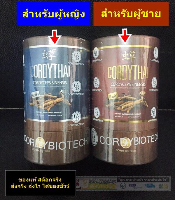Cordythai ถั่งเช่า ม เกษตร คอร์ดี้ไทย ขนาด 30 แคปซูล
