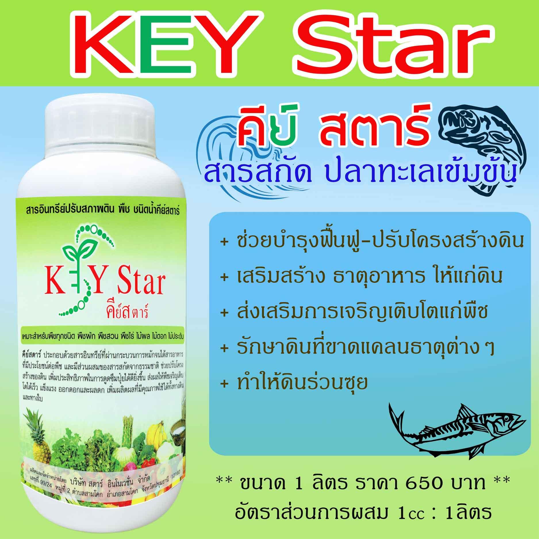 สารอินทรีย์ Key Star
