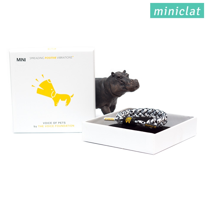 Rastaclat Miniclat - Mini Dalmatian