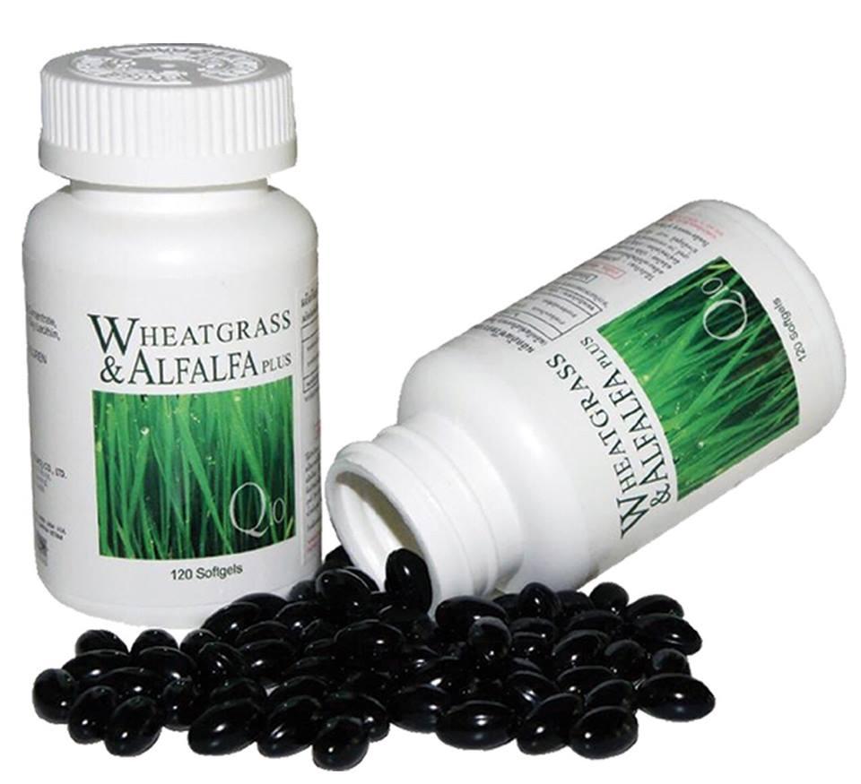 ผักเม็ด นิว ไลฟ์ Wheatgrass Alfalfa ของแท้ 1 ขวด 120แคปซูล ส่งฟรี ems
