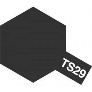 TS-29 semi gloss black (กึ่งเงากึ่งด้าน)
