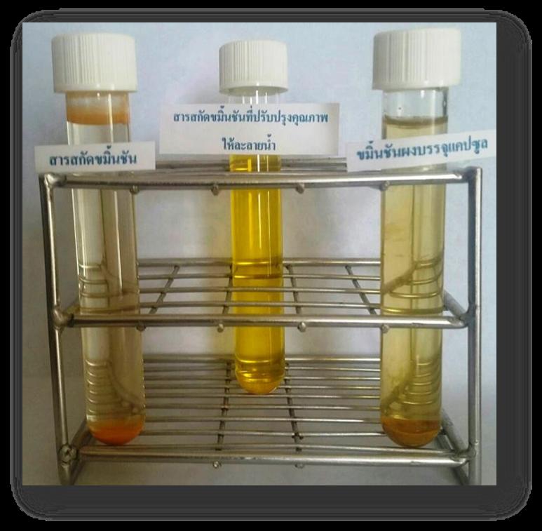 สารเคอคูมินอยด์ในขมิ้นชันละลายน้ำช่วยรักษา กรดไหลย้อน ซึ่งต่างจากขมิ้นชันในท้องตลาด
