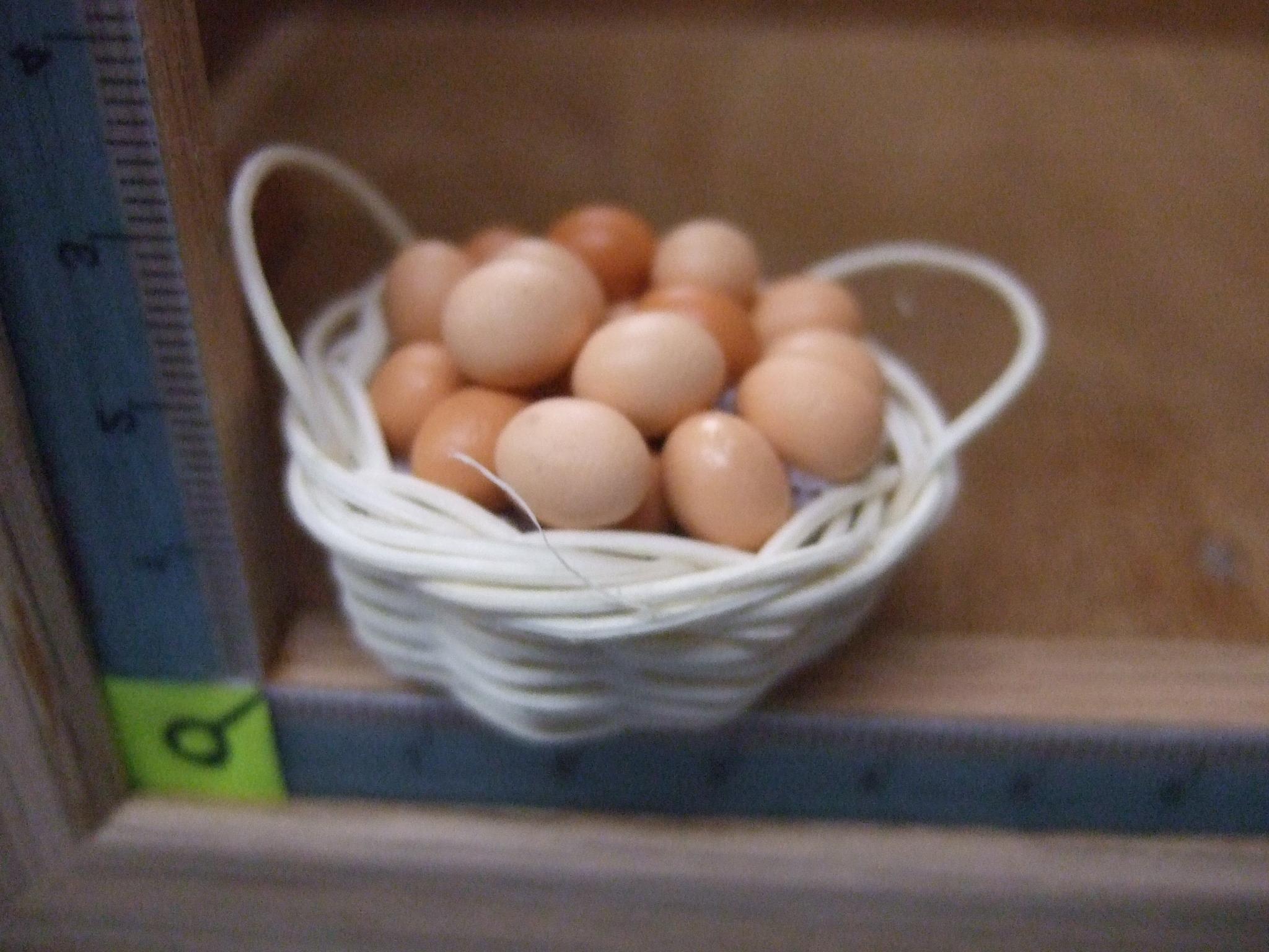 ตระกร้าไข่ไก่(แม่เหล็ก)