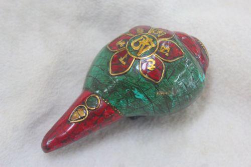 หอยสังข์ทิเบต ( Tibet Conch)