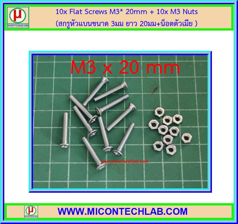 10x สกรูหัวแบน M3 ยาว 20 มม. + น็อตตัวเมีย (M3* 20mm Flat Screws)